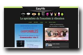 screenshot de www.easyvib.fr