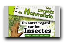 screenshot de www.cnb-namur.sitew.com/fs/Root/43k8n-carnet_insectes_refuges_2011_v2.pdf
