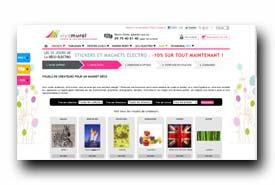 screenshot de www.vivamural.com/magnet-electromenager.php