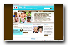 screenshot de www.adoption.gouv.fr