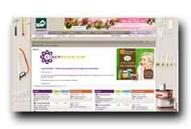 screenshot de www.cyberbricoleur.com