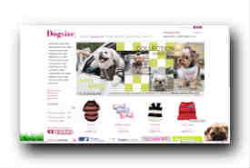 screenshot de www.dogsize.fr