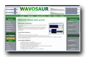 screenshot de fr.wavosaur.com/
