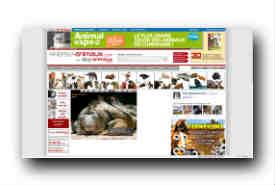screenshot de www.photos-animaux.com