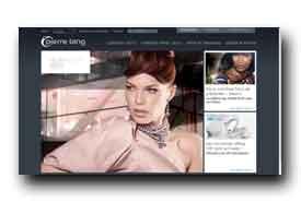 screenshot de www.pierre-lang.com