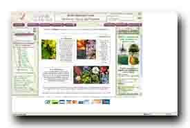 screenshot de www.jardindupicvert.com