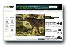 screenshot de www.pixelvalley.com